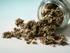 Assenzio Romano / Artemisia Absinthium 20g