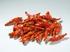Peperoncino Burmese Red 20g