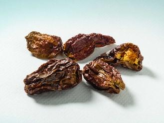Peperoncino Habanero Chocolate 10g