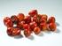 Peperoncino Indian Pearl 20g